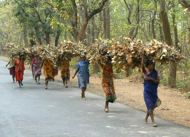 Nearly 20 Lakh Tribals Vulnerable to Eviction Thanks to Supreme Court Order