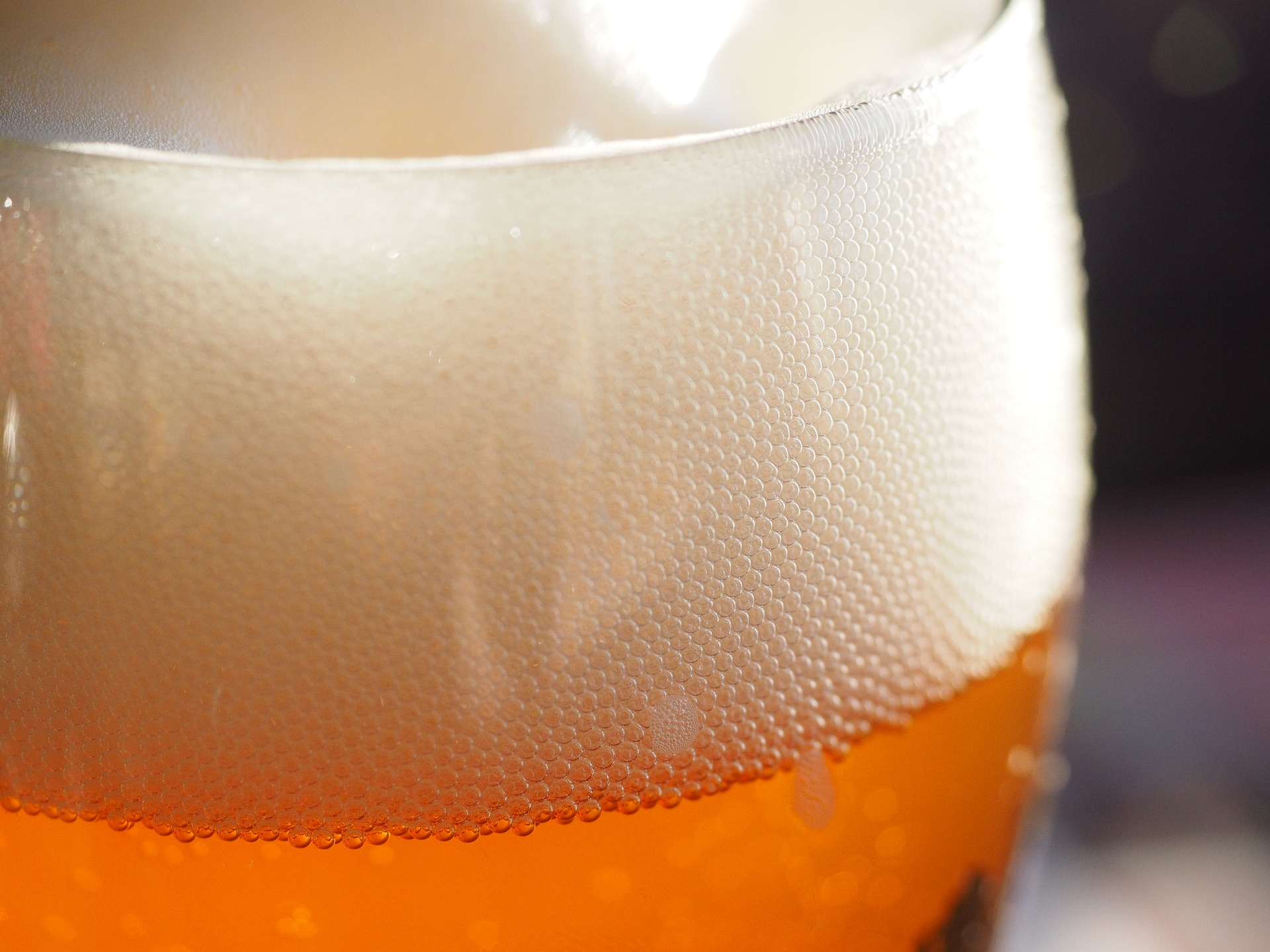 Foam Doesn't Just Make Your Beer Taste Better – It's Also a Shock-Absorber