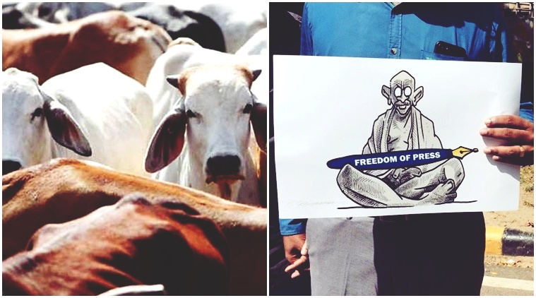 Backstory: In the Year of Cow Vigilantism, Could the Indian Media Have Done More?