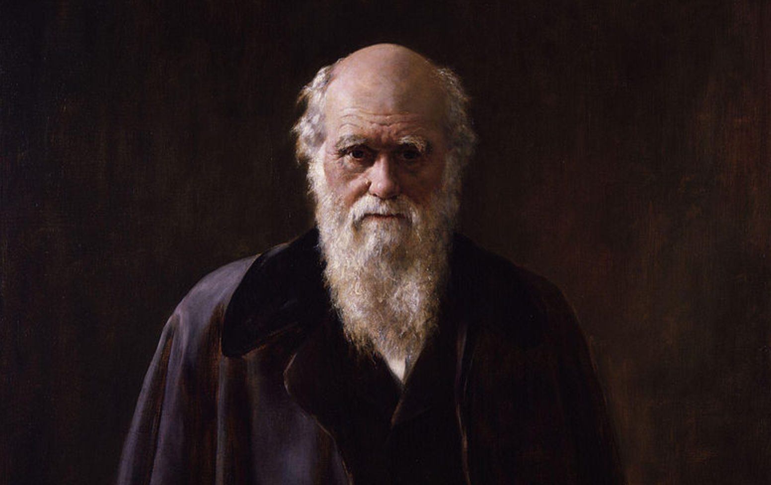 Charles Darwin. Credit: Wikimedia Commons