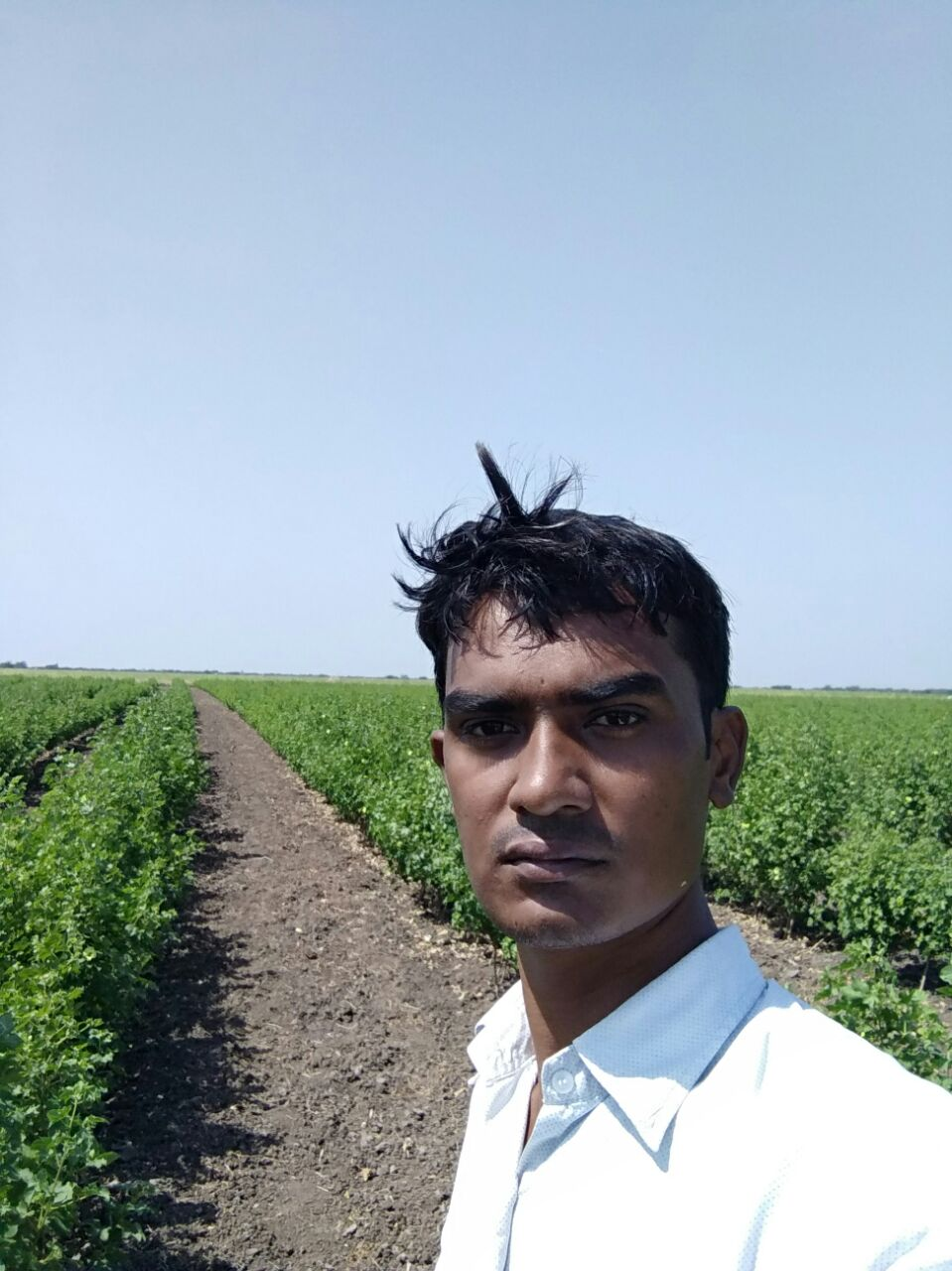 Farmer Vijay Dabhi on his fields. Credit: Damayantee Dhar