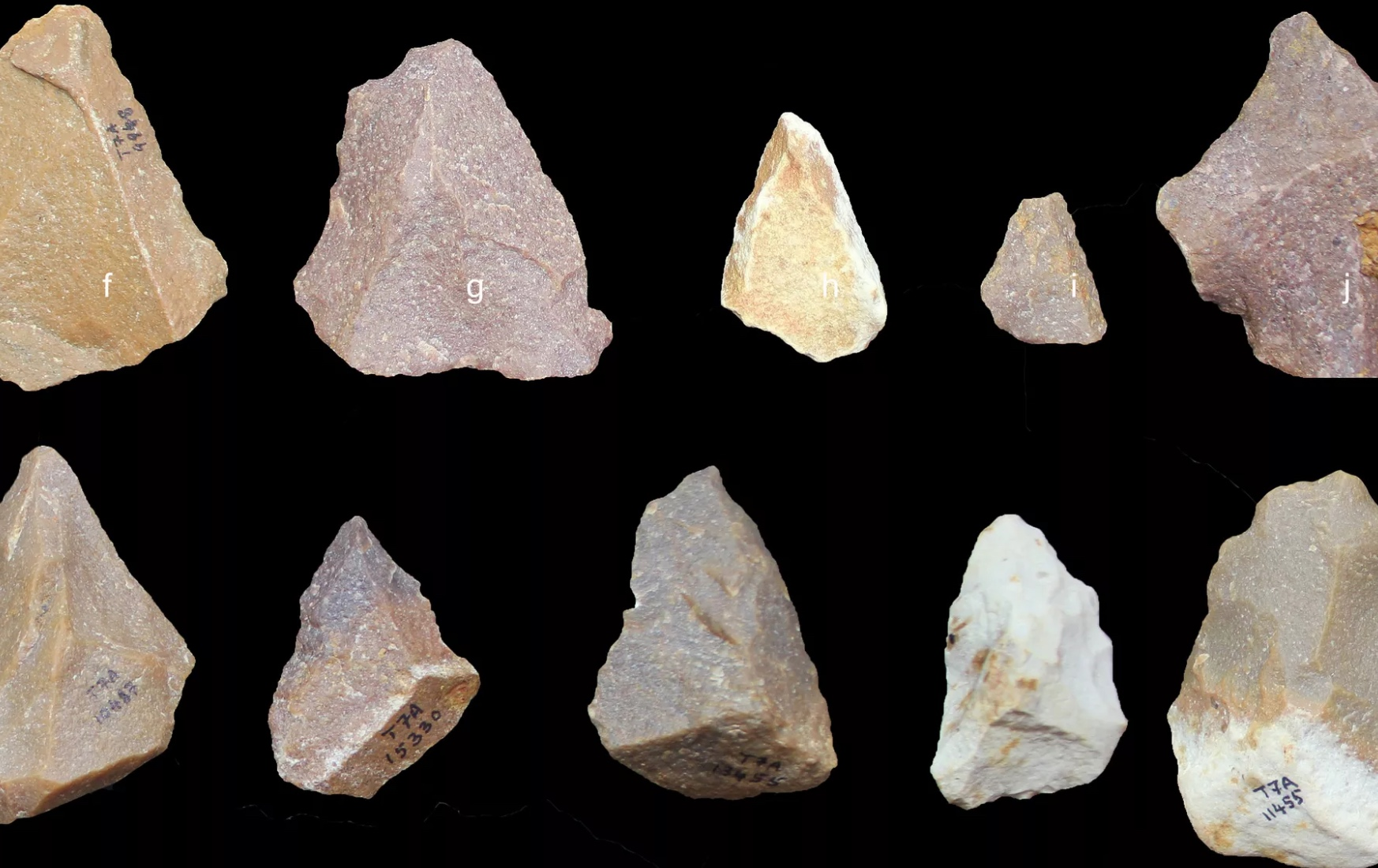 Ancient Stone Tools Found in Tamil Nadu Push Back 'Out of Africa' Exodus Date