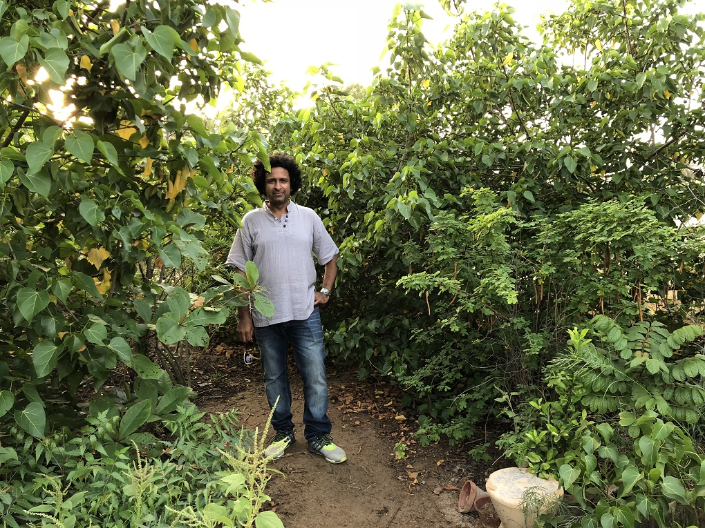 Meet the Man Who Grew a (Small) Forest in the Heart of Karachi