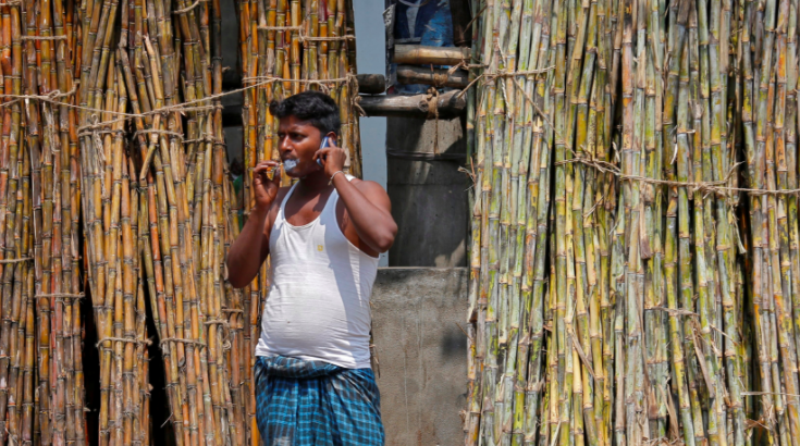 Sugarcane Farmers Caught in a Complex Web of Negligence in Eastern UP