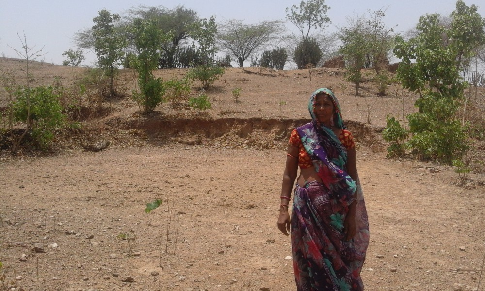 After Decades of Struggle, Rajasthan's Bhil Adivasis Hope to get Land Rights