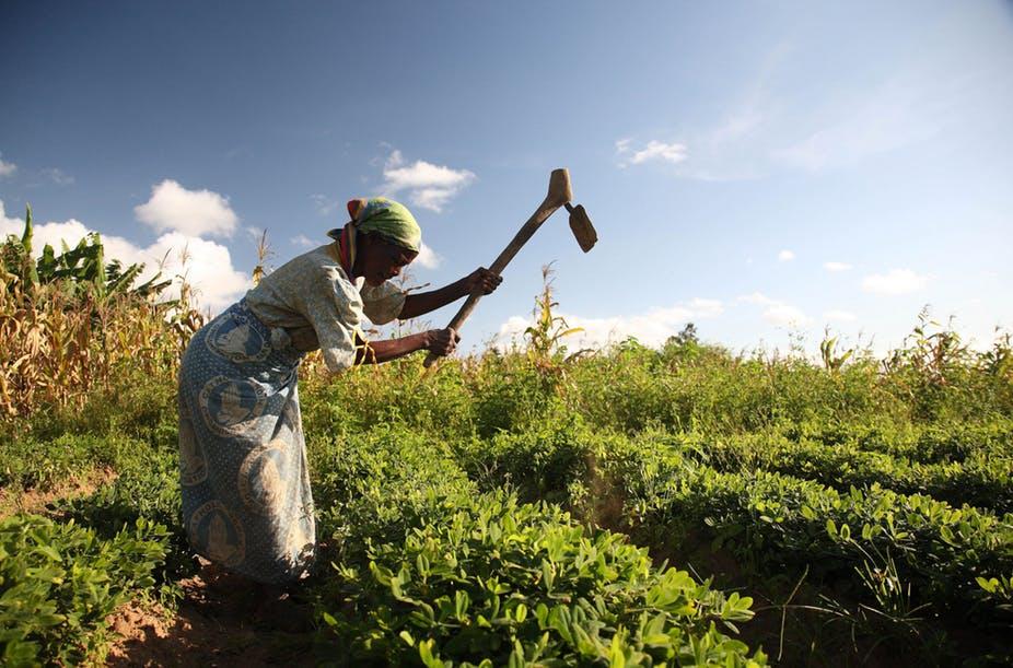 Empowering Women Goes Beyond Land Ownership in Africa