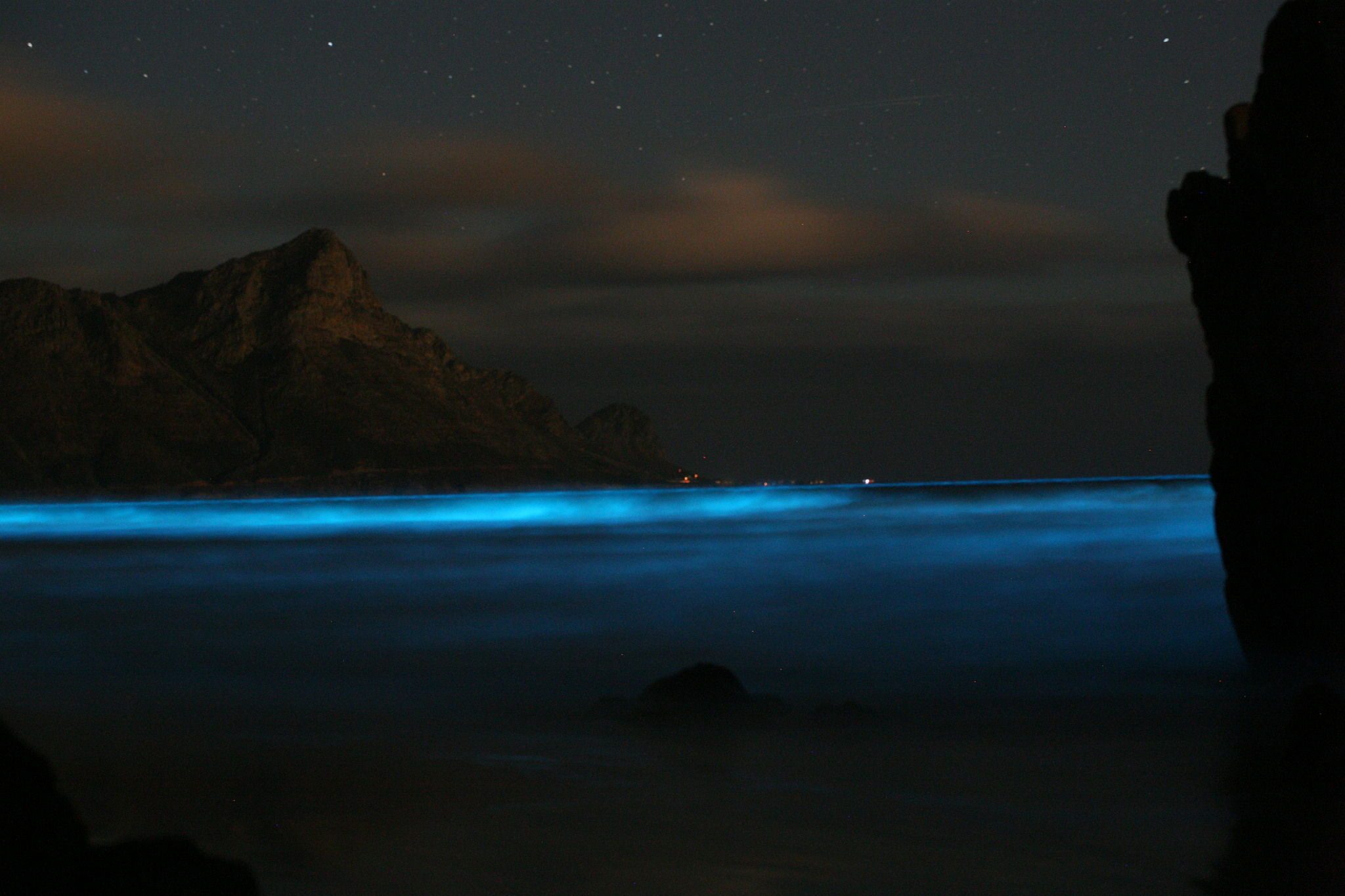 A blue tide caused by an abundance of noctilucent algae. Credit: Bruce Anderson (University of Stellenbosch), bmc_ecology/Flickr, CC BY 2.0