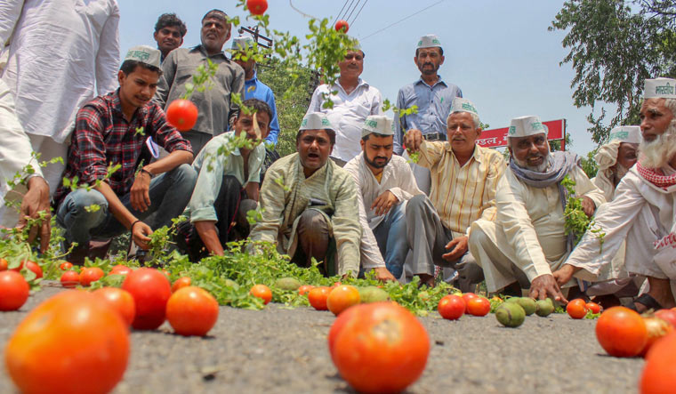 Watch: Why Farmers Across North India Are on a Ten-Day Strike