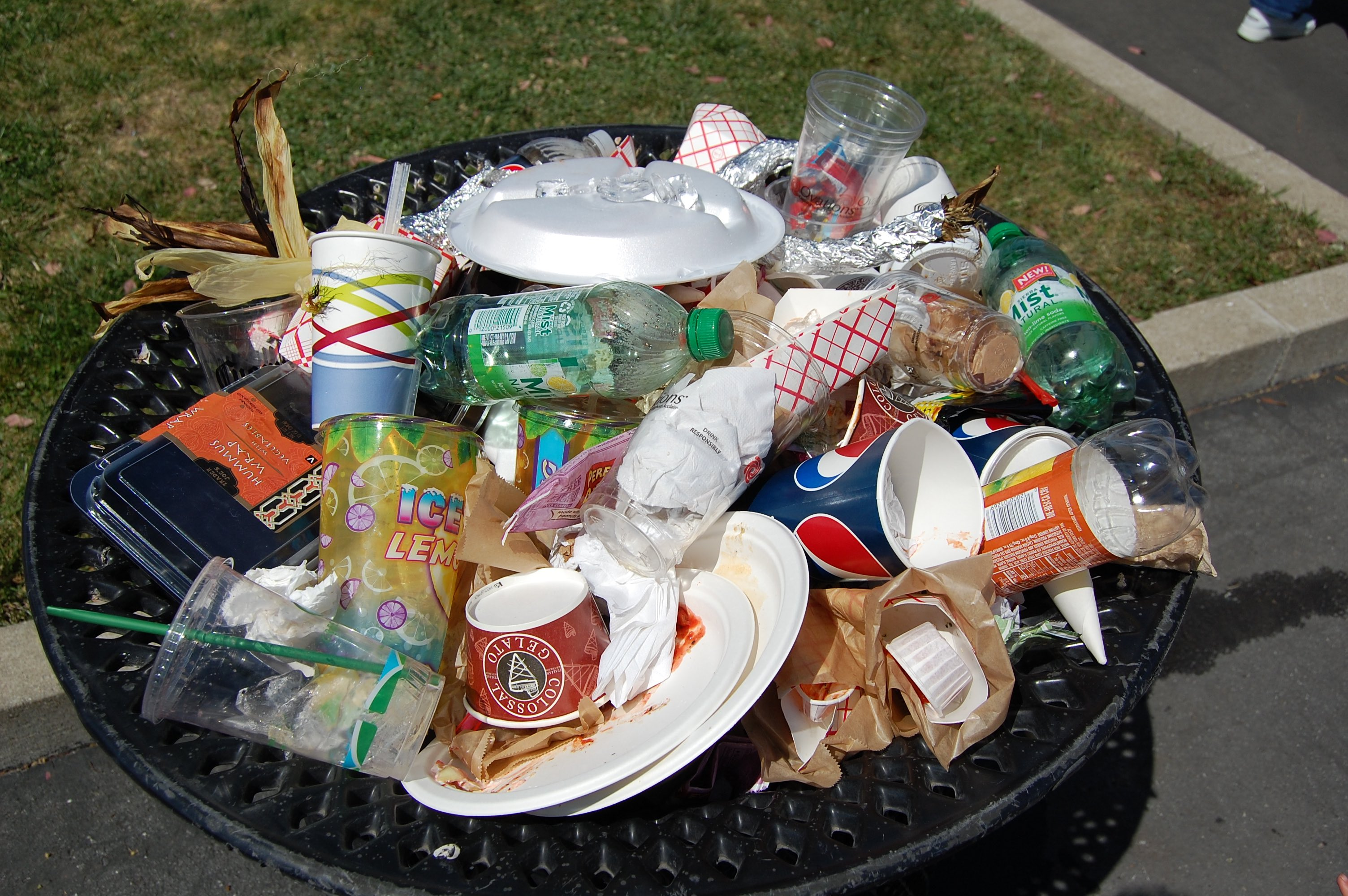 Single-use plastic items in a trash can. Credit: kevinkrejci/Flickr, CC BY 2.0