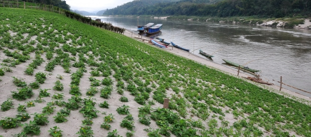 Thailand's Energy Review Delays Launch of Controversial Mekong Dam
