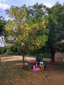 A group of children under a Cassia fistula tree. Source: Author provided