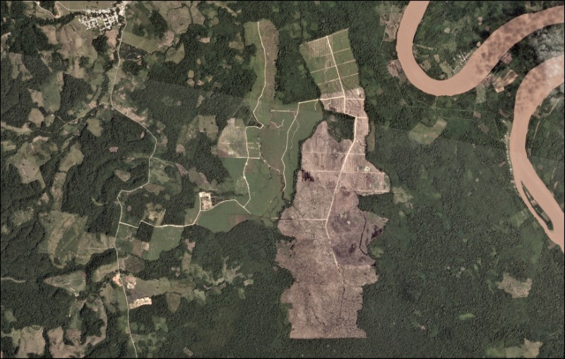 A oil palm plantation deforestation is seen from a satellite image in the northern Amazon region of San Martin, Peru. This is an undated handout photo provided by Matt Finer, obtained by Reuters June 21, 2018. Credit: Handout via Reuters