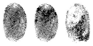 These fingerprints are merely sample taken from NIST Image database for illustration purposes only.