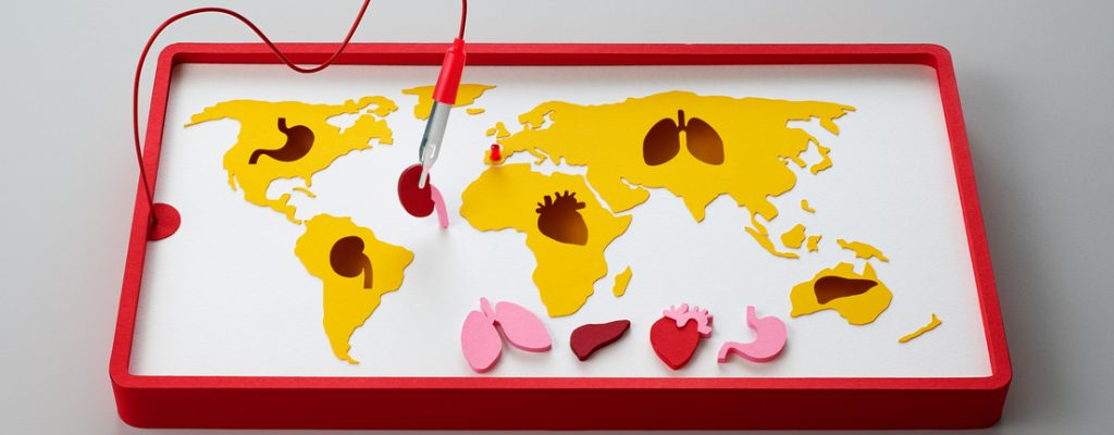 Why Does Spain Lead the World in Organ Donation?