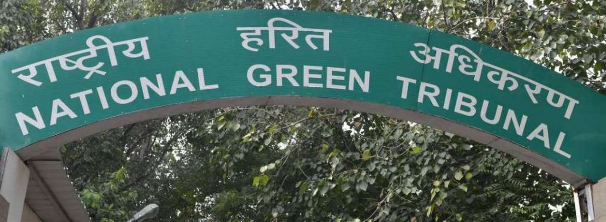 Implement Vishwamitri River Action Plan in Three Months, NGT Tells Authorities