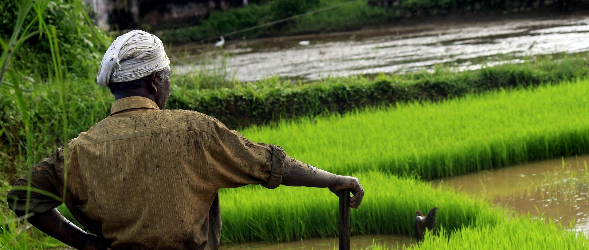 Image result for modi farmers