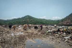 The Farce of 'Integrated Waste Management' in Himachal Pradesh