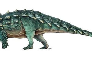 Spiky Tank-Like Dinosaur Discovered in Utah