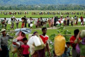 Myanmar Appoints Panel to Probe Human Rights Abuses in Rakhine State