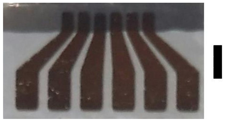 Optical image of the electrode array on a glass substrate. The dark grey region is the deposited sample. Each gold digit has a 1 mm width in the region of the sample deposition. The inter-digit gap is 100 µm and each digit is 100 nm high. Scale bar: 3 mm. Caption and credit: arXiv:1807.08572
