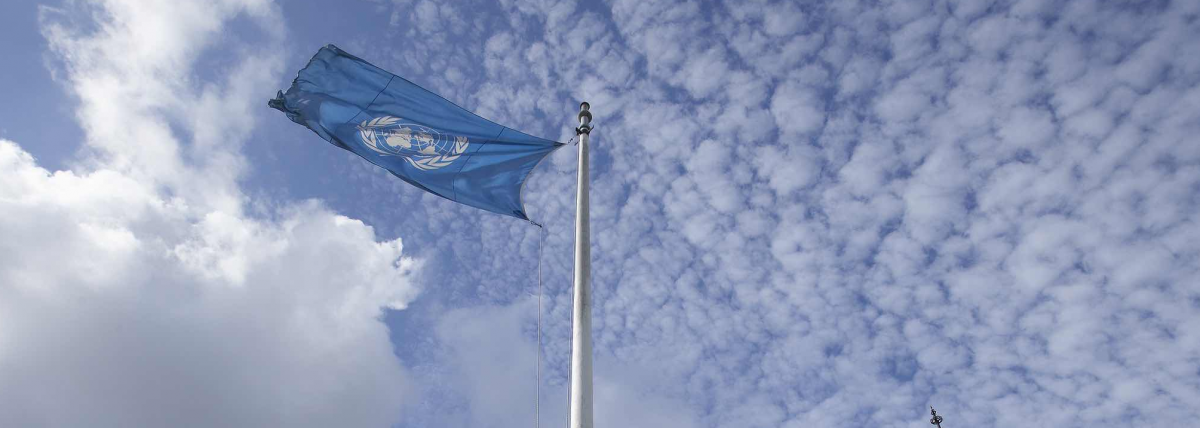 Why is India the Only Country Funding the United Nations Tax Committee?