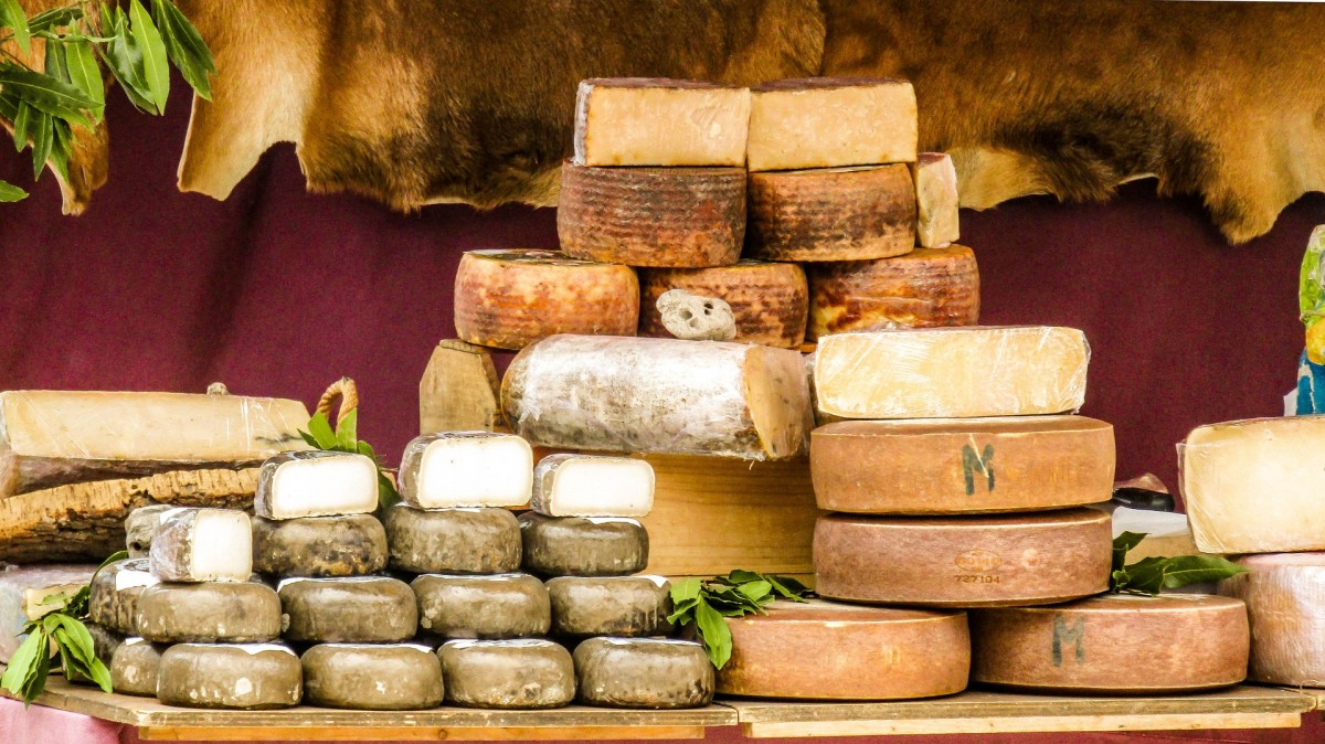 We have ancient ancestors to thank for the cheese we eat today. Credit: Pixabay