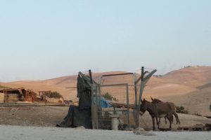 The Last Days of Al-Khan al-Ahmar, Palestine