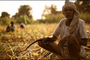 The Maltreated Farmer Could Solve India's Unemployment Crisis