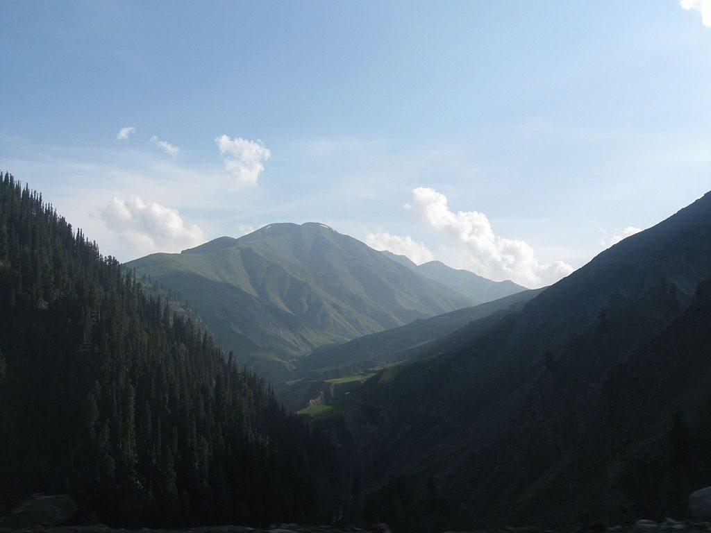 The Hirpora Wildlife Sanctuary has dense coniferous forests and difficult terrain. Credit: Maxx786 at English Wikipedia, CC BY 3.0