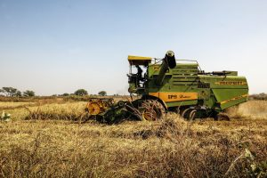 With Pusa Decomposer, IARI Hopes to Offer Organic Solution To Stubble Burning Problem