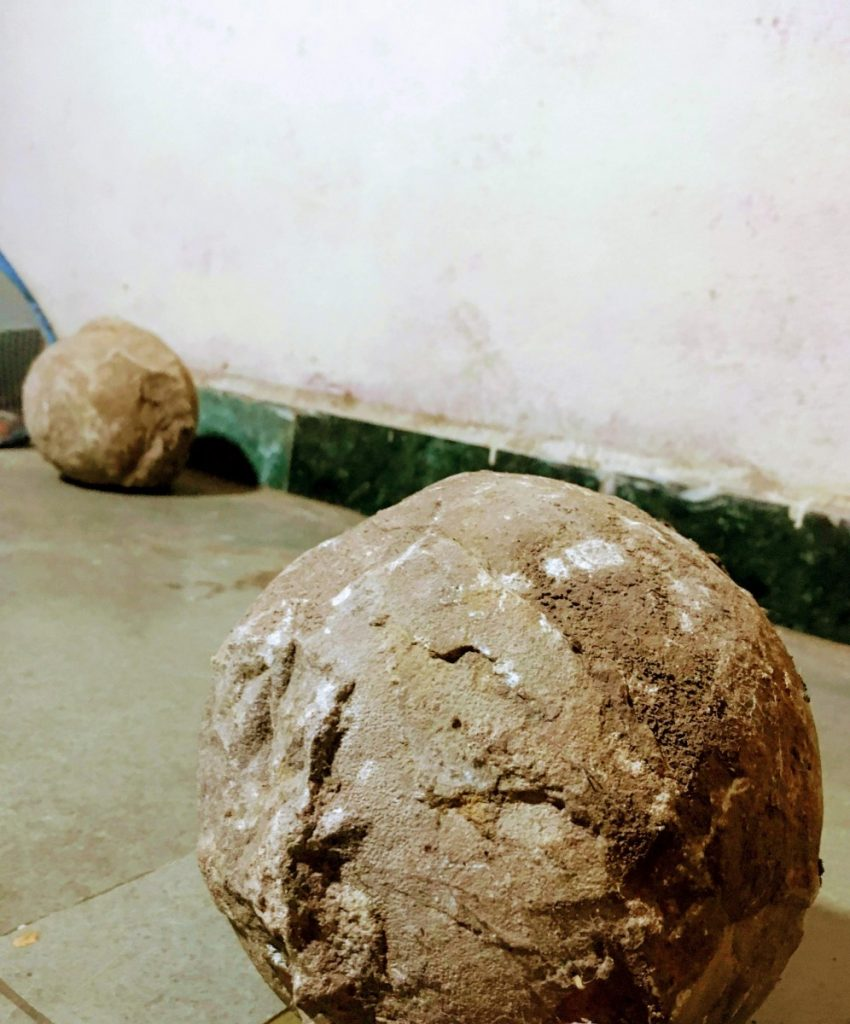 Dinosaur-egg fossils. Credit: Anupama Chandrasekaran
