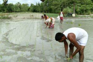 Climate Change Hits Bihar Farmers Twice This Year