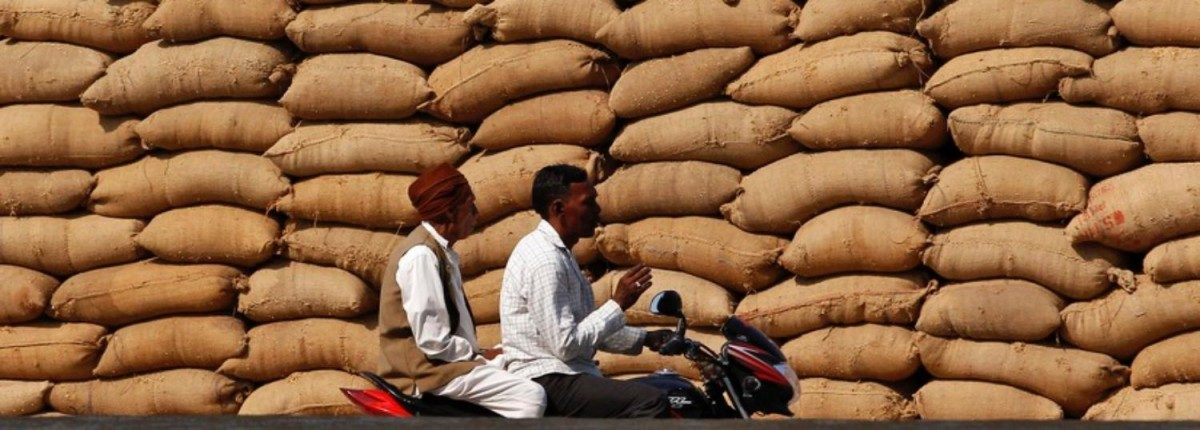 Farmers' Losses Mount to Rs 1,000 Crore as October Prices Fall Short of Kharif MSP