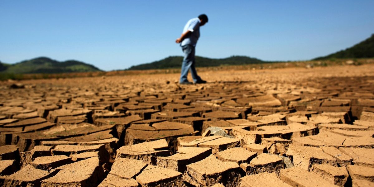 Developed Countries Need to Do More for Climate Finance: Economic Survey