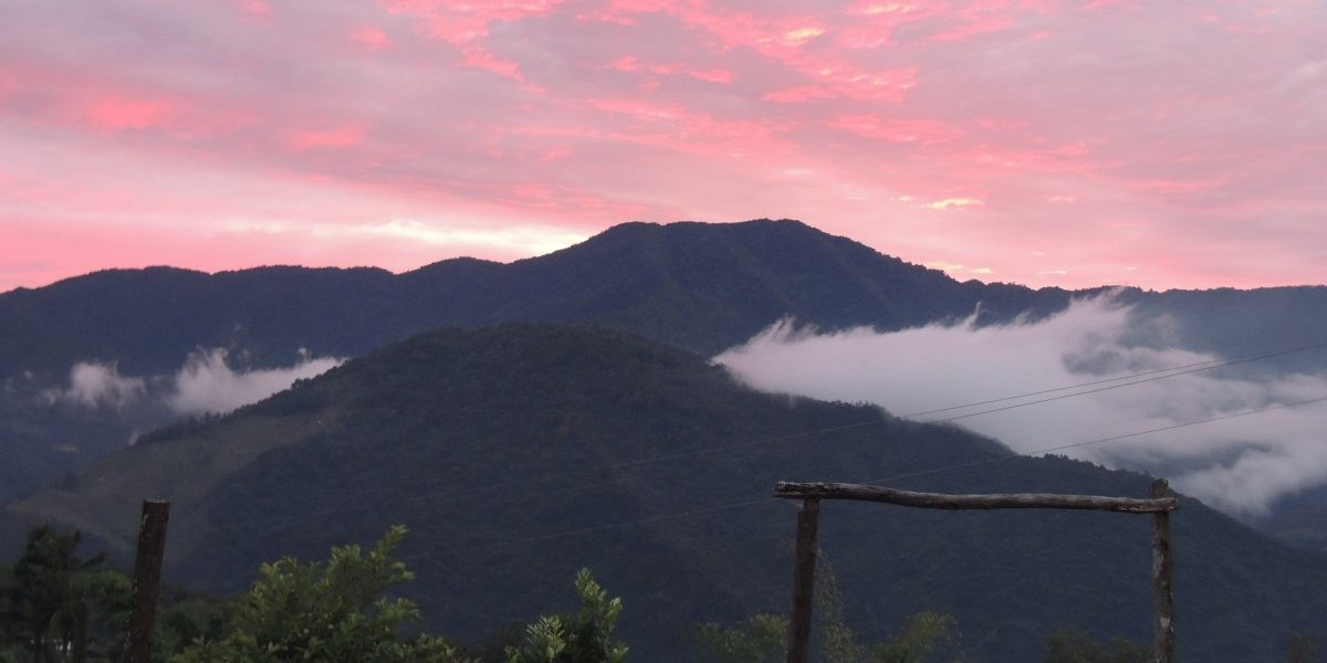 An Experimental Eco-Tourist in Nagaland