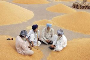 Will the PM Kisan Scheme Impress India's Farmers?