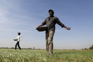 Under Modi's Crop Insurance Scheme, Companies Owe Farmers a Whopping Rs 2,800 Crore
