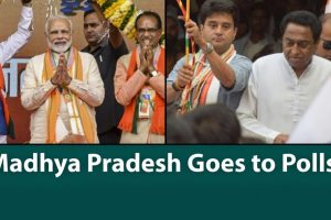 Watch | What Is at Stake as Madhya Pradesh Goes to Polls