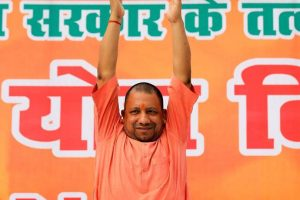 Cess to Fund Cow Shelters Slammed by Opposition in Uttar Pradesh