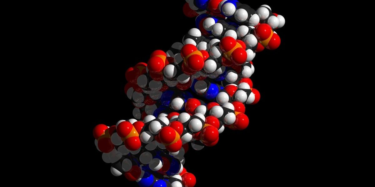 Lok Sabha Passes DNA Technology Bill – All You Need to Know