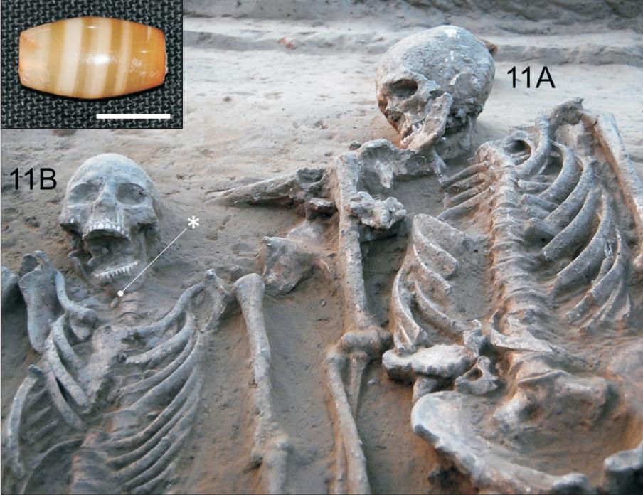 Harappan civilisation, Indus Valley civilisation, Harappa, Mohenjo Daro, Rakhigarhi, Haryana, Archaeological Survey of India, Sutlej river, Harappan necropolis, ancient burial, joint burial, archaeology, Neolithic era