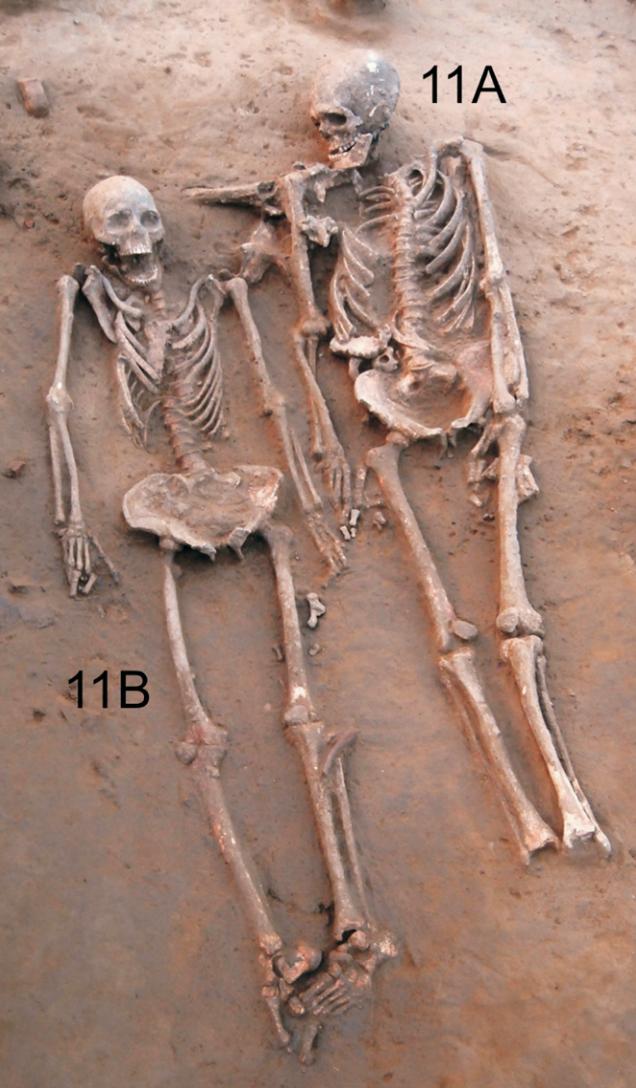 The two skeletons. Their heads were placed towards the north. The bones in the man's feet were missing at the time of discovery. Caption and credit: Anat Cell Biol. 2018 Sep;51(3):200-204