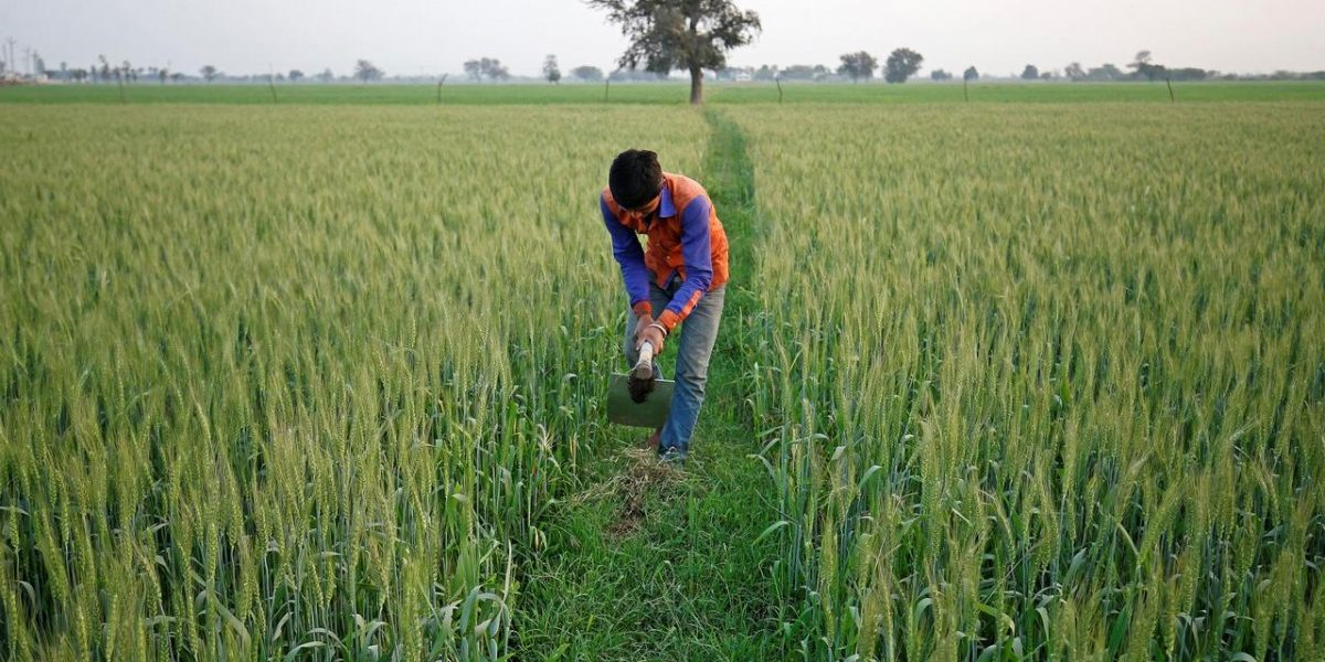 Loan Waivers Continue to Be Elusive for Lakhs of Farmers in Uttar Pradesh