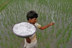 Ground Report: What Farmers Had to Say About Modi Govt'sIncome Support Scheme