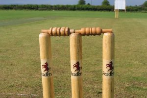 How Cricket Stump Mics Are Expanding the Private Into the Spectacle