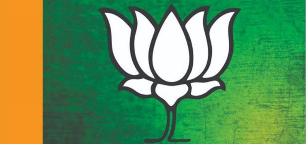 Elections 2019 Bjp Swaps Out Saffron For Green In Kashmir Campaign
