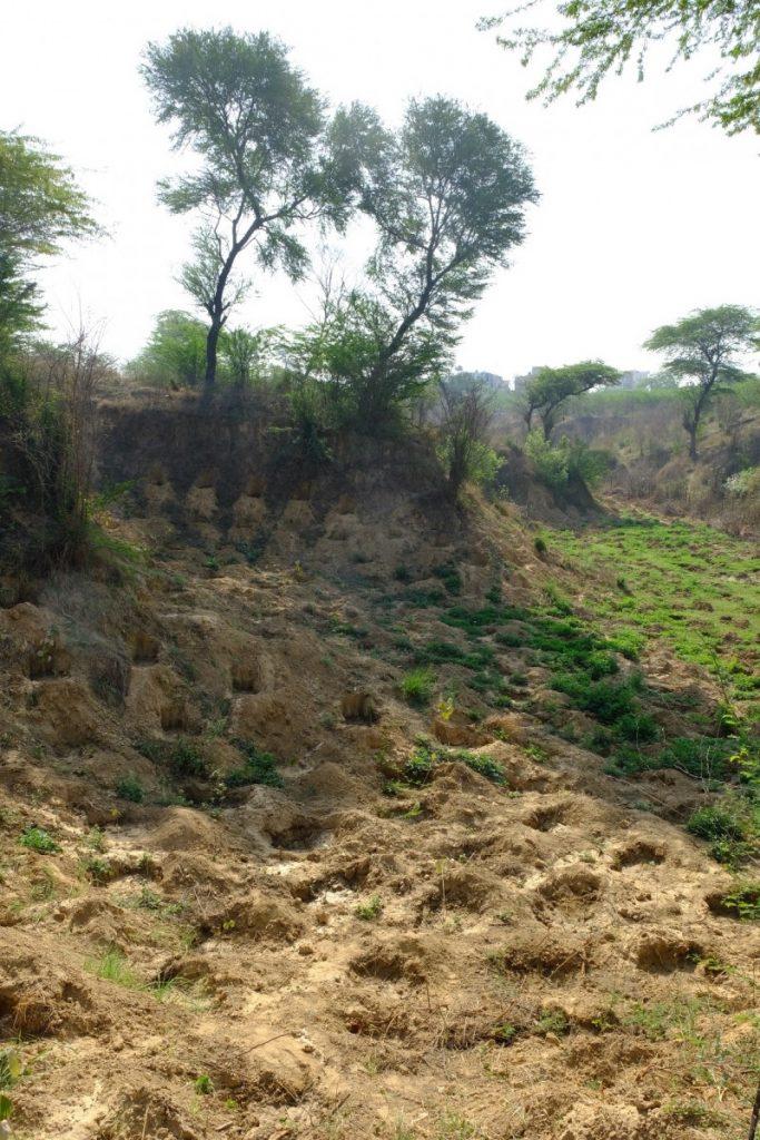 A shaved valley in Dera Mandi. Credit: Pradip Krishen