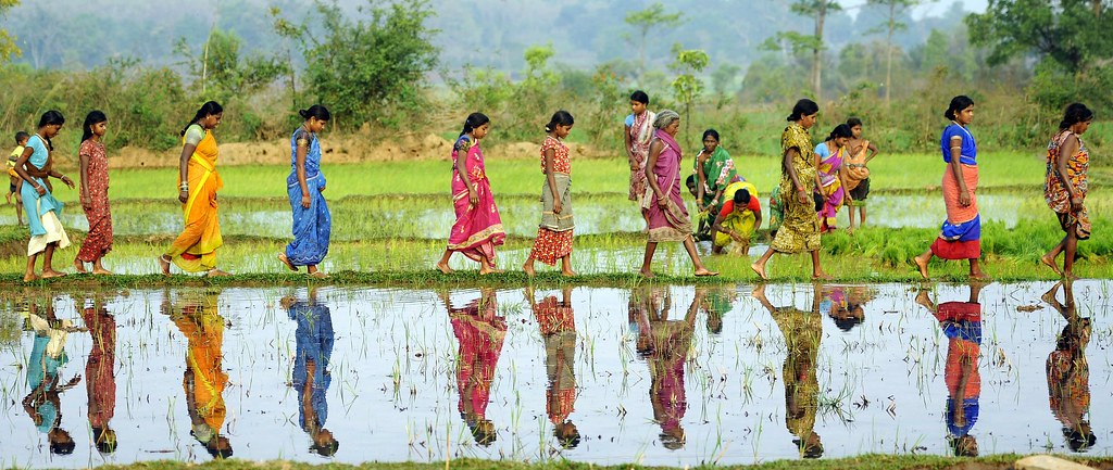 The Life of Labour: Agrarian Distress in Andhra; Patriarchy in Marathwada