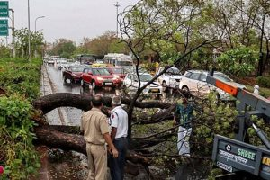 Rain, Dust Storm Leaves 35 Dead in Rajasthan, MP and Gujarat