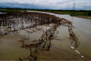 Agonising Wait for Assam's Climate Victims as Rivers Swallow Homes, Farmlands